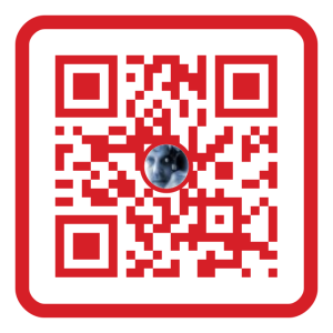Me Scan-Scan-Page-Color