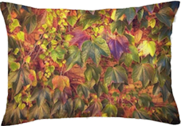 Autumnal leaves Pillow for blog