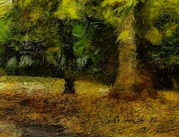 Trees texture closeup